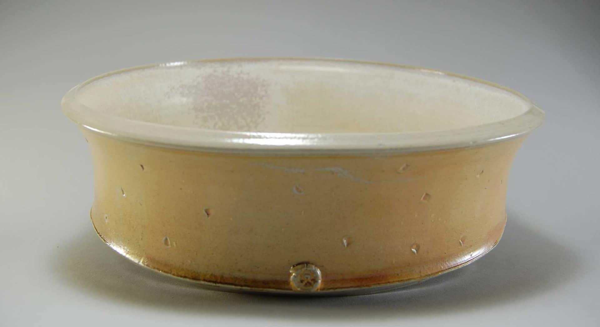 Dish02_01 (Large)